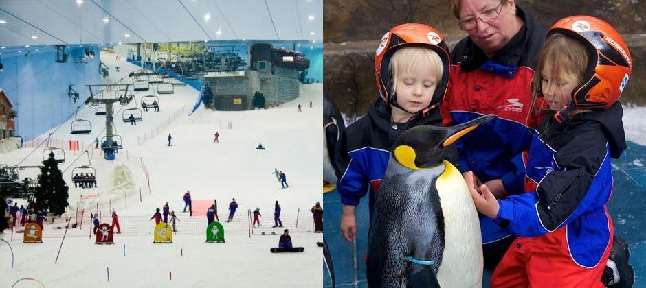 Dubai -   Snow Park & Dubai Dolphinarium