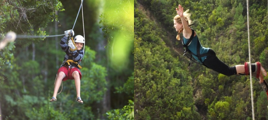 Day 8: Knysna: Optional Activities: Tsitsikamma Canopy Tour, Bloukrans Bungy Jumping, Etc