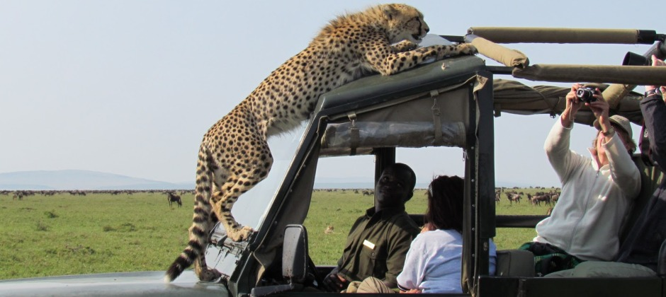 Ngorongoro – Depart