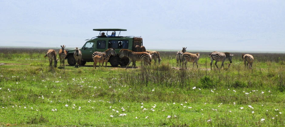 Lake Manyara – Serengeti National Park