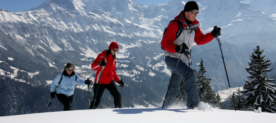Lucerne: Guided Mount Titlis Excursion