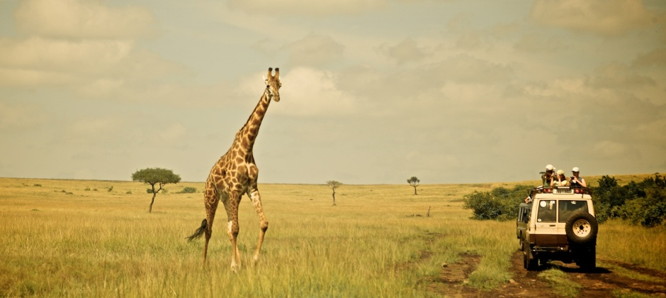 Lake Naivasha – Masai Mara (5 Hrs): Game Drive