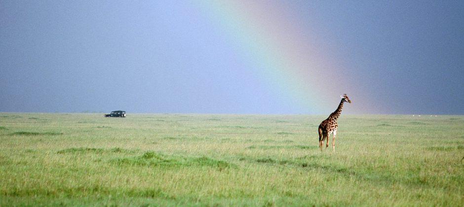 Lake Naivasha – Masai Mara