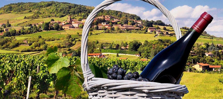 Lyon: Beaujolais vineyard visit (Optional)