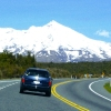 New Zealand Whirl by Road