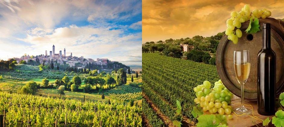 Florence: Full Day Excursion to Siena & Gimignano
