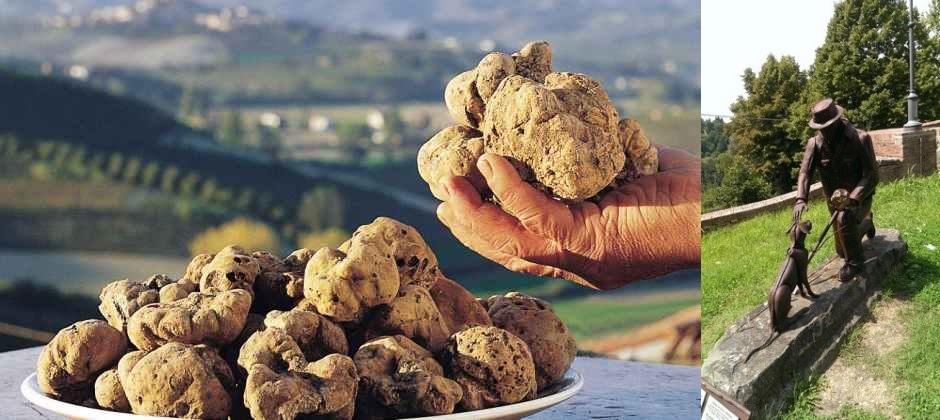 Florence: Visit San Miniato For Truffle Hunting & Tasting