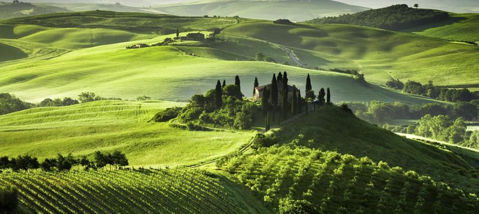 Florence: Day excursion to Montepulciano, Pienza & Montalcino