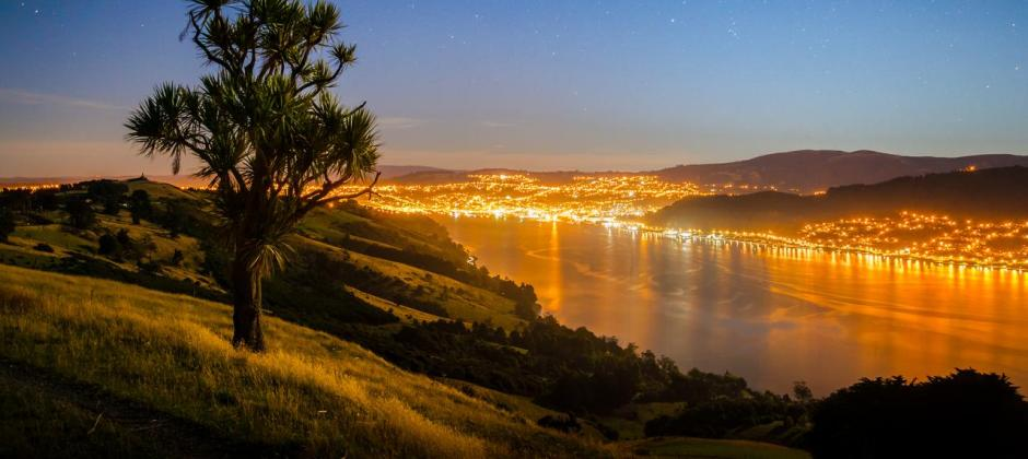 Te Ananu – Dunedin: Speight Brewery Tour