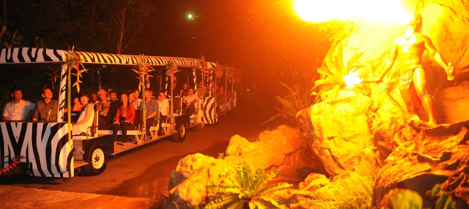 Arrive Singapore: Night Safari Tour