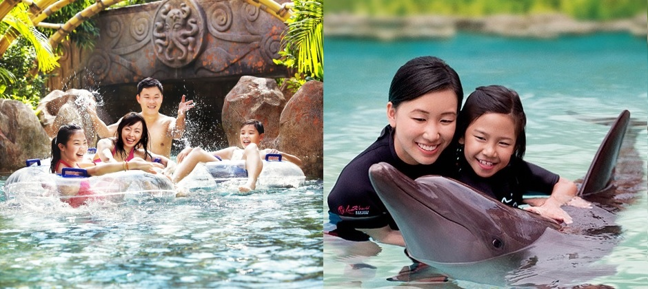 Singapore: Dolphin Discovery + Adventure Cove Water Park |