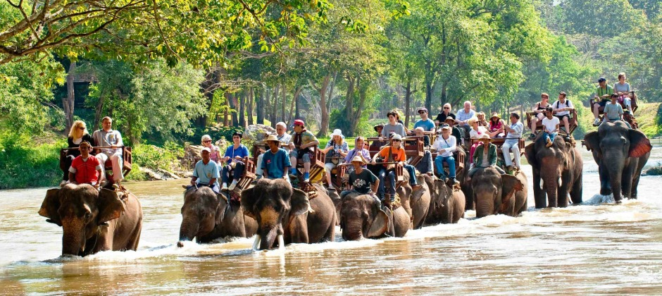Chiang Mai | Elephant Safari, Rafting and Longneck Hilltribe