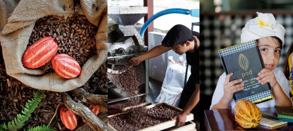 Bali | Pod Chocolate Tour