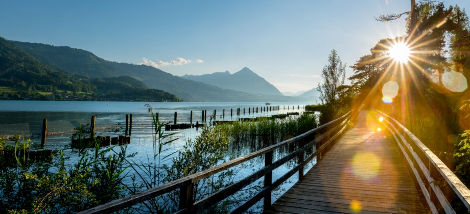 Lucerne – Interlaken | Free Day