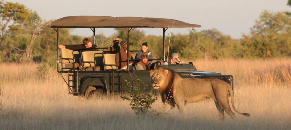 Rovos Rail | Afternoon Game drive at the Hide