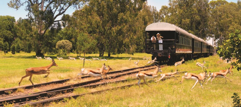Rovos Rail – Victoria falls | Free day