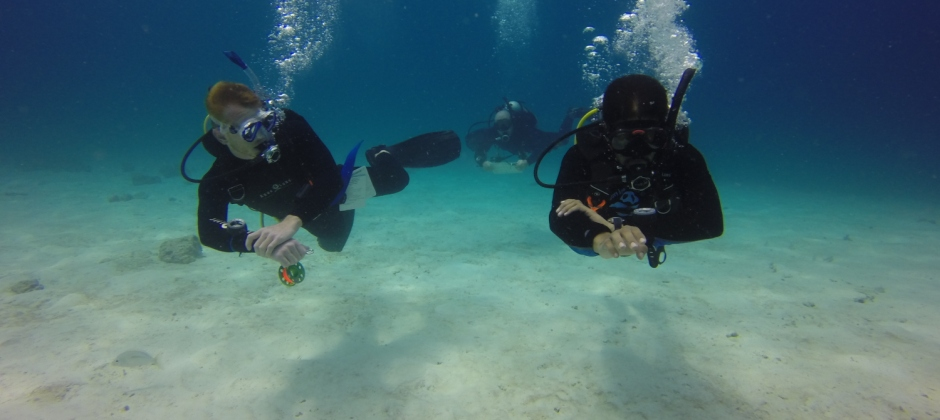 Phuket | Diving & Training With 1 Dives