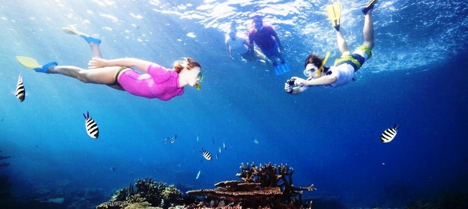 Hamilton Island : Full Day Cruise Whitsundays Great Barrier Reef tour