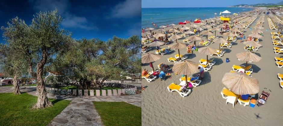Budva: Excursion To South Of Montenegro