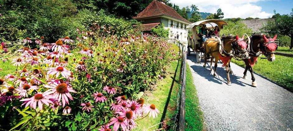 Engelberg | Visit Ballenberg Open air museum | Orientation tour of Interlaken