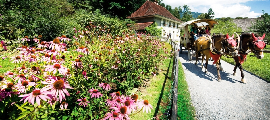 Interlaken – Ballenberg Museum – Swiss Open Air Museum