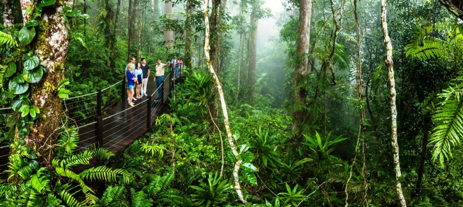 Experience Kuranda All Inclusive