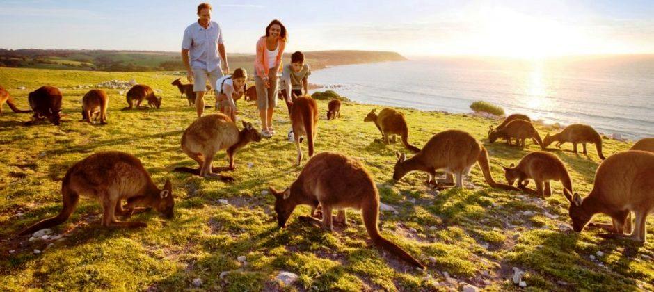 Adelaide – Kangaroo Island