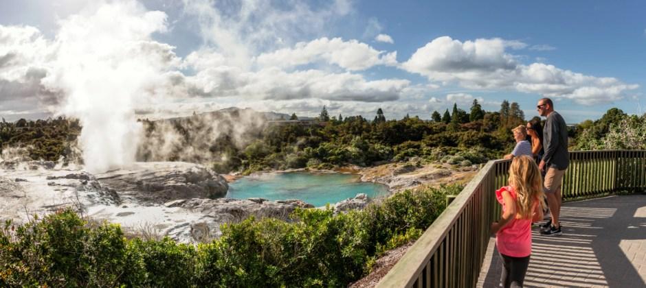 Rotorua (Te Puia  Thermal  Reserve,  Rainbow  Springs  And  Agrodome  Sheep  Show  )