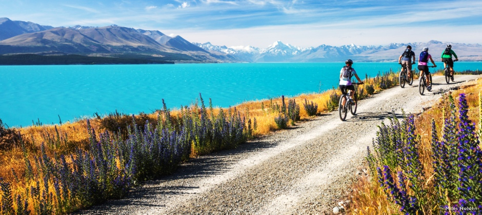 Punakaiki to Greymouth – Christchurch by Transalpine Train –City Tour