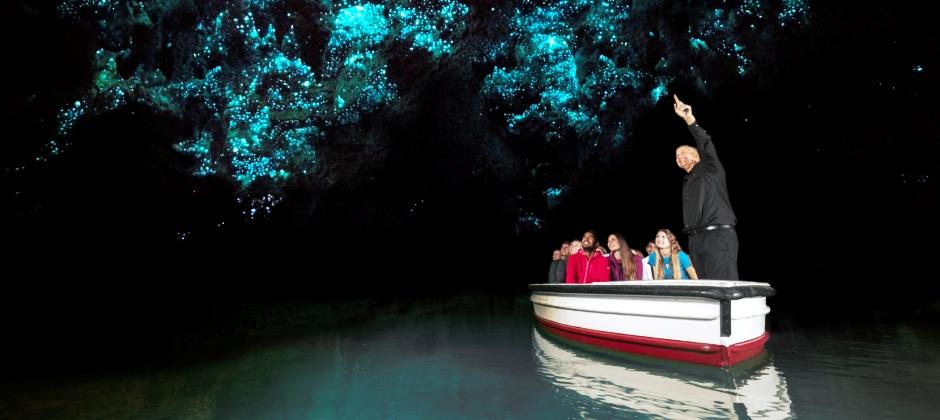 Coromandel – Tauranga - Glowworm Kayak