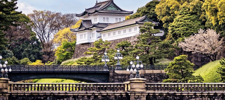 Tokyo Morning Tour (B)
