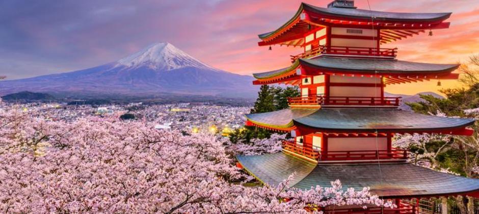 Mt. Fuji & Hakone Tour (B)