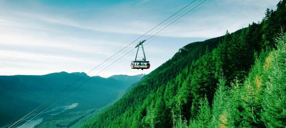 Vancouver : Sightseeing Tour Of North Shore