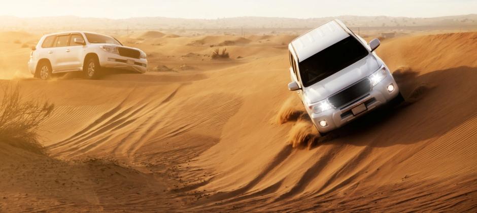 Dubai: City tour and Desert Safari