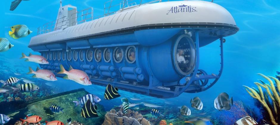 Maui Island: Atlantis Sub-Marine & Whale Watching Tour