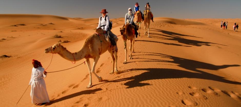 Ras Al Hadd- Wahiba Sands: Dune Bashing- Muscat