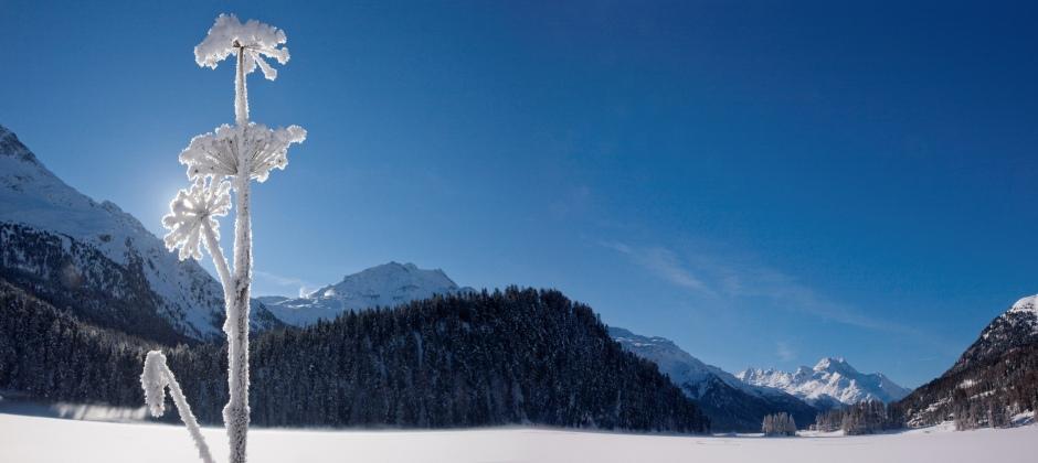 Lucerne – St. Moritz