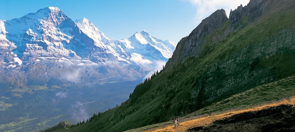 Zermatt - Interlaken